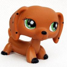 Lps gato raro animal pet shop lps brinquedos cão dachshund marrom 556 675 original figura collie cocker spaniel great dane criança presentes(China)