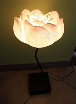 Chinese style antique classic lamps bedroom lamp study light floor lamp -