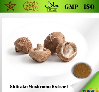 Hotsale 5bottle Shiitake Mushroom(Lentinula Edodes) Extract 30% Polysaccharide500mg 450counts An excellent immune system booster<br><br>Aliexpress
