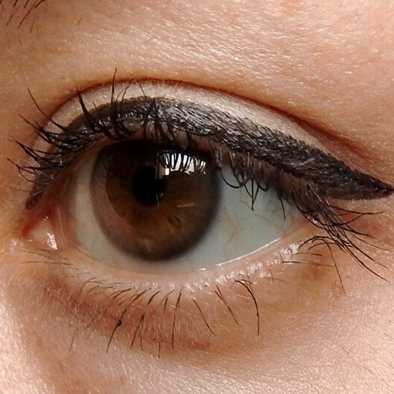 2017 Cheapest Waterproof Black Liquid Eyeliner Pen Make Up Beauty Eye Liner Pencil Cosmetics Lipstick Eyebrow