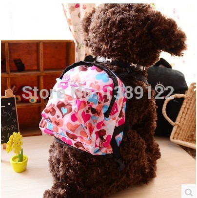 free shipping excellent leadership belt strap small dog leash dog leash dog leash bag backpack cat toy coleira para cachorro(China (Mainland))