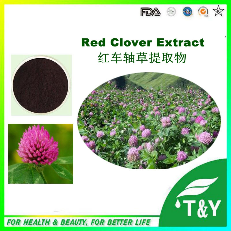 Manufactory Supply High Quality Isoflavone Red Clover Extract with bottom price 900g<br><br>Aliexpress