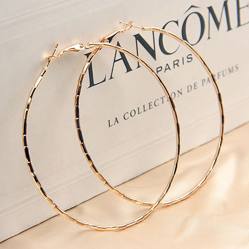 Free Shipping!Cheap!!Trendy Big Size Style Gold Alloy Big Hoop Earrings For Women (at least $ 10  mix order)(China (Mainland))