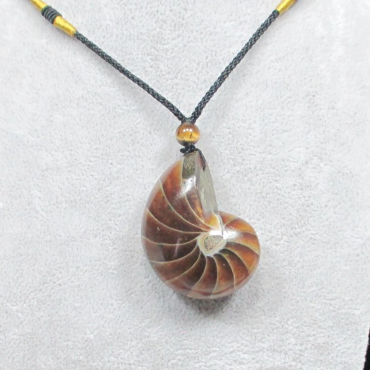 necklace Natural ammonite pendant Conch fossil pendant accessories pendant stone(China (Mainland))