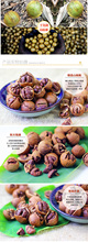 Free Shipping Wild hickory nut 456g 228g 2bags Cream flavor Snacks China food New Arrivals
