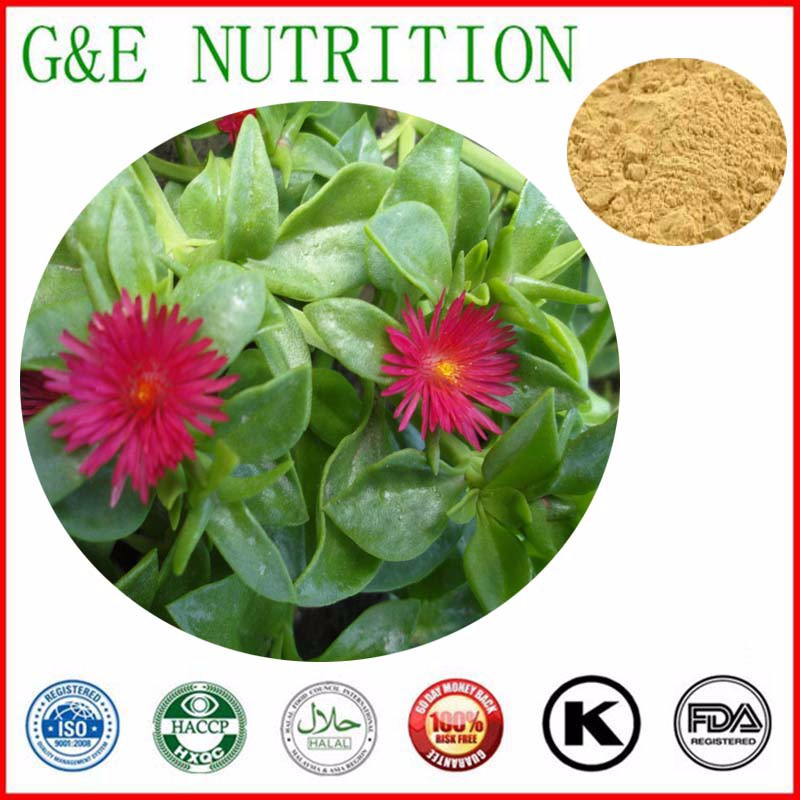 900g High quality Andrographis paniculata/Common Andrographis Herb/ Creat Extract with free shipping<br><br>Aliexpress