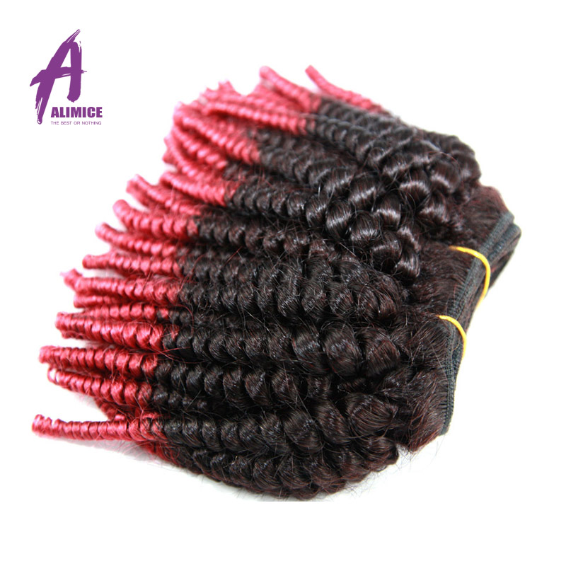 New Arrival Human Hair Products 4 Pieces Lot  Brazilian Virgin Hair Two Tone Wet And Wavy Hair Ombre hair extension<br><br>Aliexpress