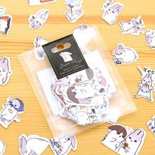 40 Pcs / Pack New Kawaii Chubby Rabbit Series Pet Sticker Pack / Hot Sell Deco Packing Stickers / School Office Supplies
