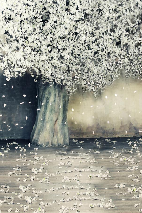 photography backdrops 300cm*600cm(10ft*20ft) Blooms blossom petals vinyl backdrop LK4314<br><br>Aliexpress