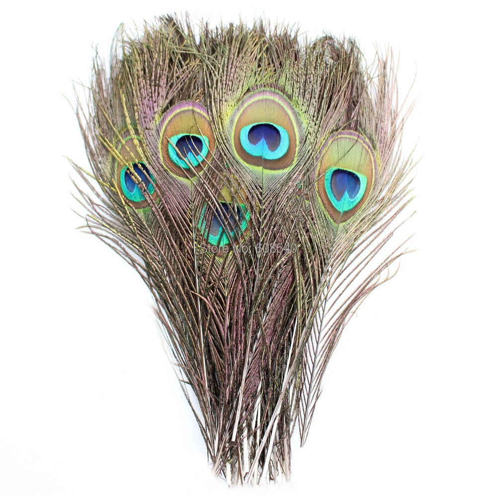 Buy 50pc beautiful natural peacock for Where can i buy peacock feathers craft store