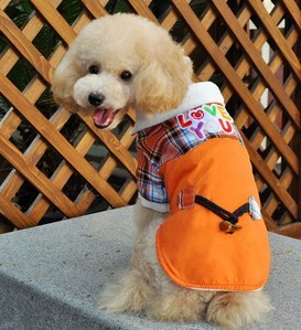 Pet Supplies pet Clothes 2013 New winter horn button jacket pet dog clothes SIZE S/M/L/XL/XXL(China (Mainland))