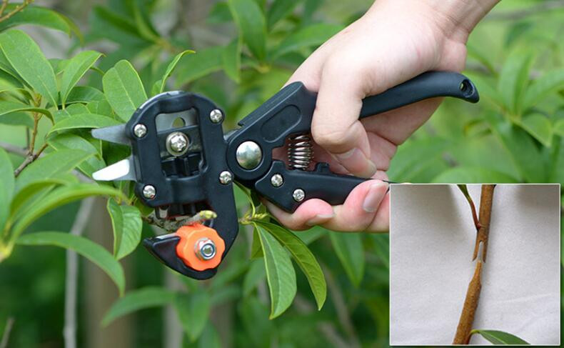 Buy Free shipping,Garden Tool.enxerto fruit tree grafting machine El injerto knife scissors grafting seedling grafting device cheap