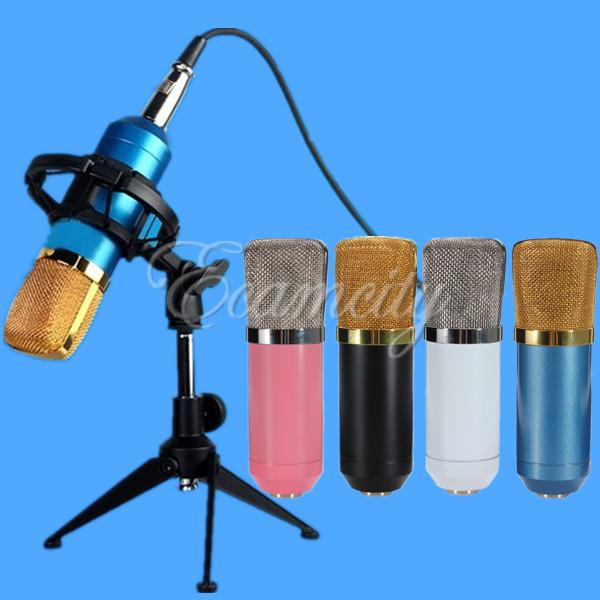 Excellent audio processing Wired Condenser Studio Microphone BM700 Karaoke Stand Holder Skype MSN Chat Karaoke Recording KTV(China (Mainland))