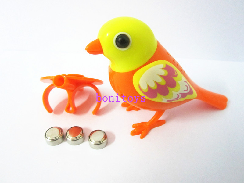 Bird Talking Toy : The latest version of toy talking parrot digi