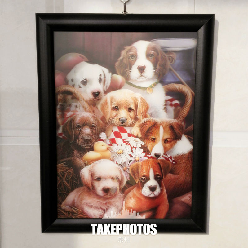 3d decorative painting pet dog fashion/ lenticular pictures/mirror picture frames(China (Mainland))