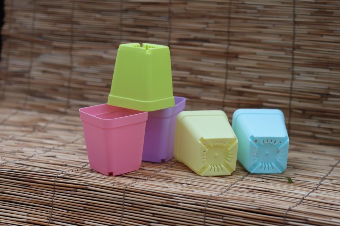 Mini hars gk-87080 multicolour vlees kleine bloempot bekken kwekerij potten grote 12g(China (Mainland))
