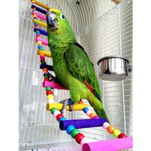2015 nouvelle arrivée oiseau perroquet coloré escalade échelle jouet swing de perroquet jouets perroquet fournitures ppsr(China (Mainland))