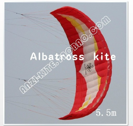 Newest style 5.5m2 professional nylon kite traction kite,jumping kite with bag,bar set free shipping