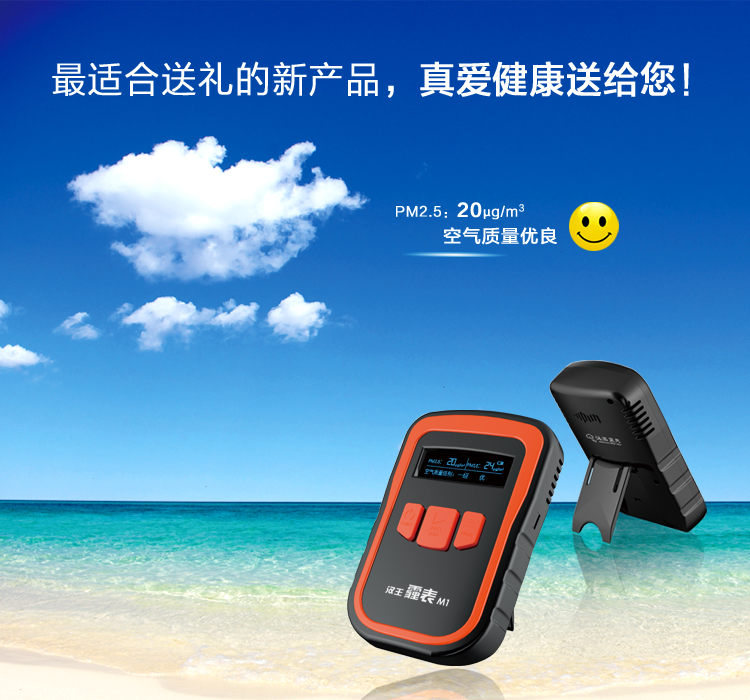 PM2.5 detector Handheld Household haze meter M1 air quality Formaldehyde testing instruments<br><br>Aliexpress