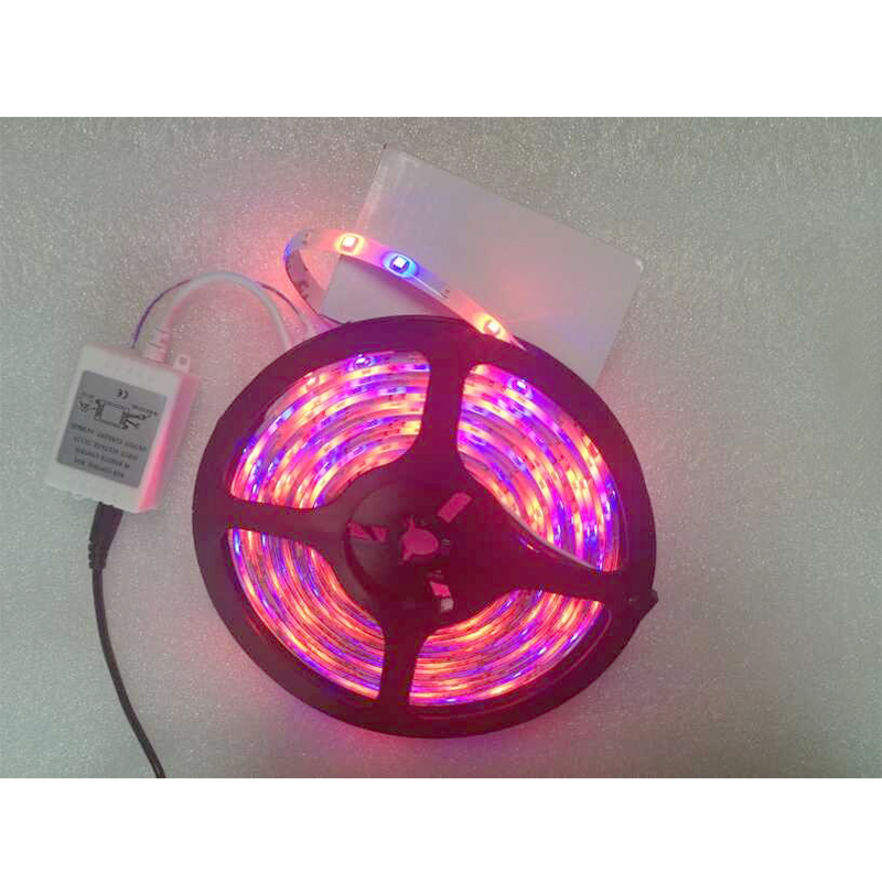 Led iron picture more detailed picture about 12v waterproof rgb ruban led s - Casa guirlande lumineuse ...