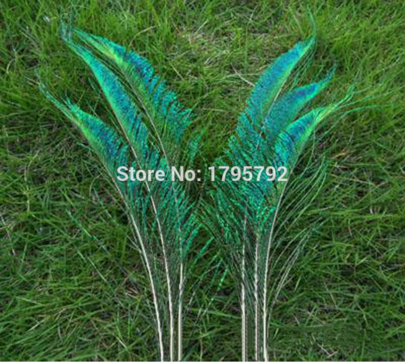Beautiful! 50pcs 12-14 inches / 30-35cm Natural Peacock Feather Sword Symmetrical For DIY Wedding Party Decoration(China (Mainland))