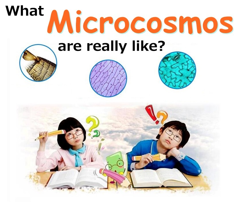 Children Toy 1200x Zoom Illuminated Student Monocular Science Microscope for Birthday Gift
