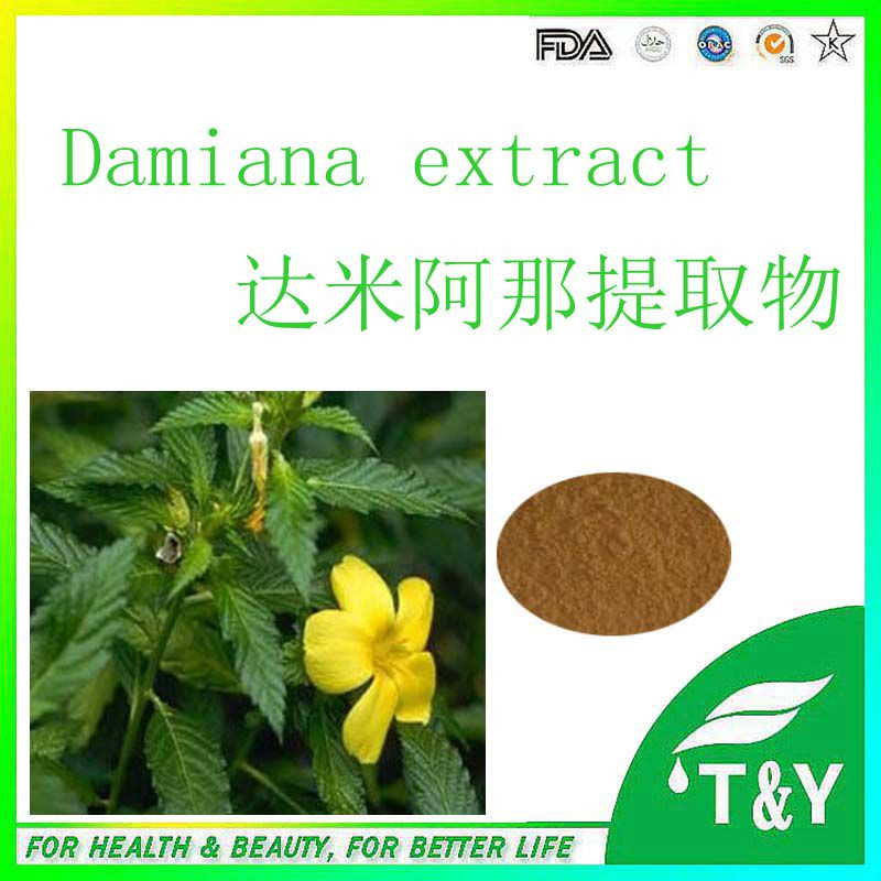 High quality Damiana extract /Damiana leaf extract / Damiana extract powder 1000g/lot(China (Mainland))