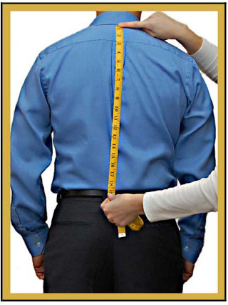 half back Length measurements