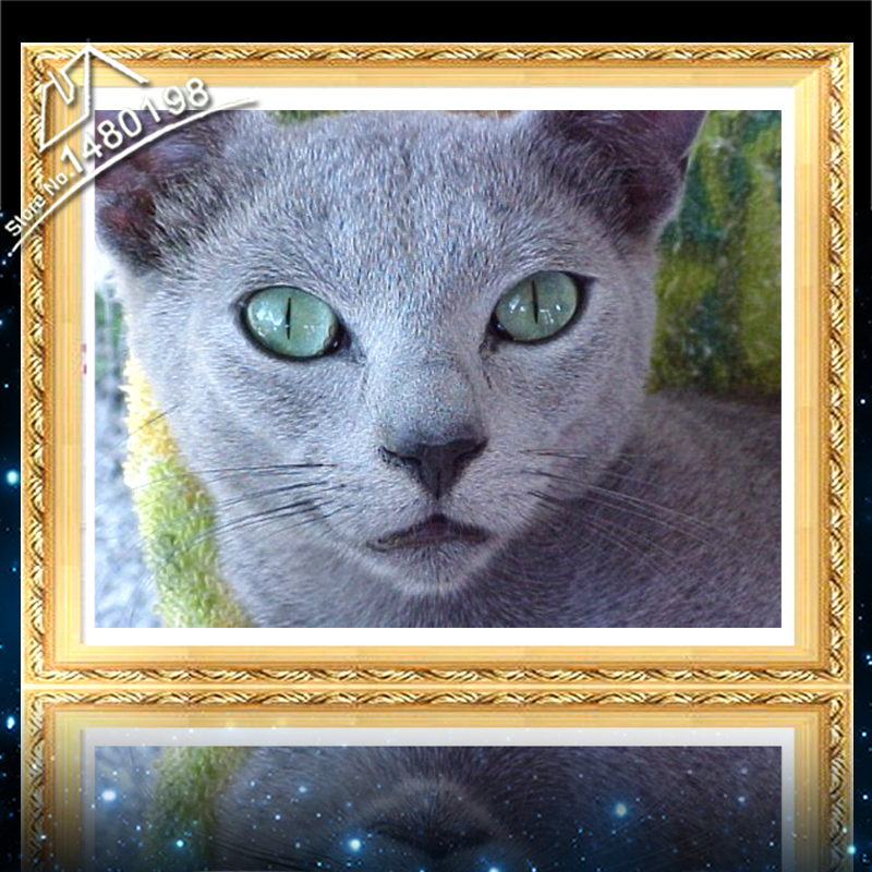 Home Decoration Pictures Of Cat DIY 3D Diamond Mosaic Painting Embroidery Paintings Diamond Needlework Cross Stitch Animal Pet