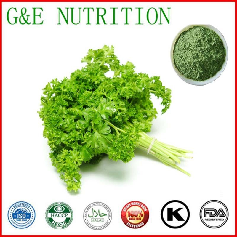 300g GMP Standard Parsley/ rosemary/ prezzemolo/ die Peterselie Extract with free shipping<br><br>Aliexpress