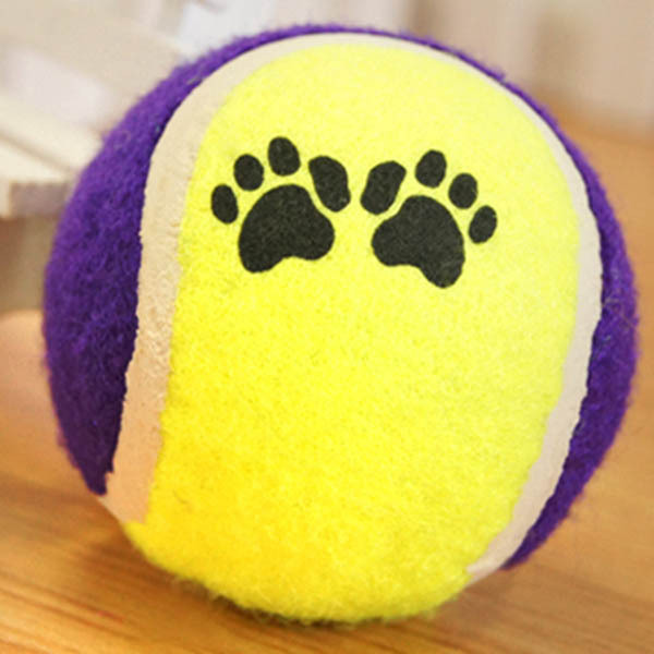 Cute Pets Suppliers Dog Cat Tennis Balls Run Play Chew Toys Dog Pet Toys(China (Mainland))