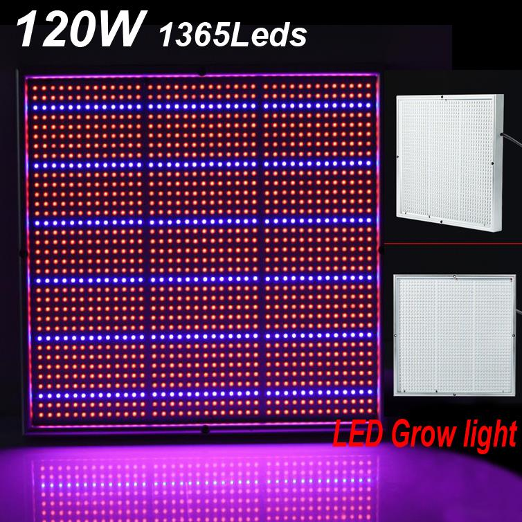 Newest 120W 1131Red:234Blue High Power LED Grow Light LED lamp for Flowering Plant and Hydroponics System AC85-265V FreeShipping<br><br>Aliexpress