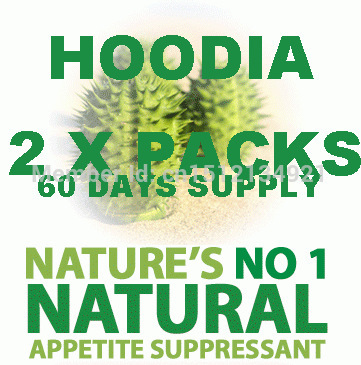 Strong formula curb control suppress appetite south African cactus pure hoodia gordonii extracts(China (Mainland))