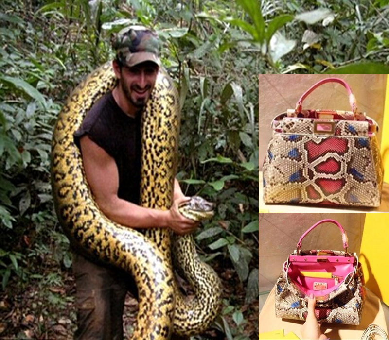 100%python skin technology 2015Fend bag South Africa imports of python skin handbag Single shoulder bag(China (Mainland))
