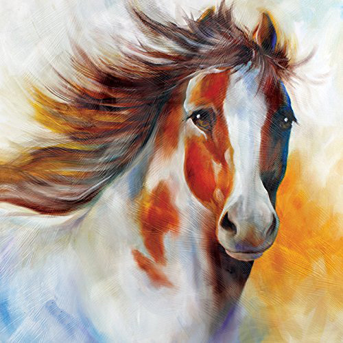 Modern Wall Art 100% Handpainted Abstract Pictures Handsome Pony Pictures on Canvas Horse Oil Paintings for Wall and Home Decor(China (Mainland))