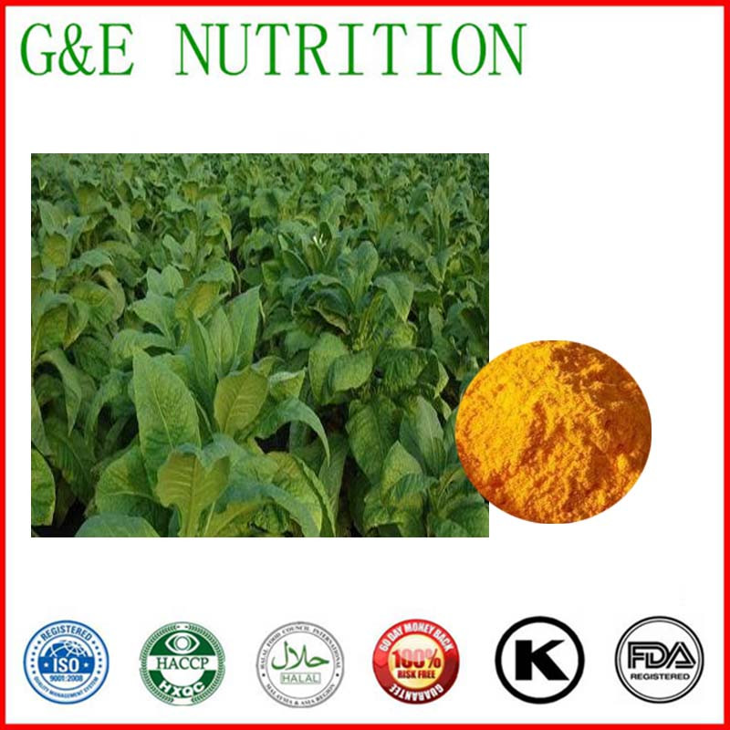 Hot Sell High Quality Nature Made Coq10 in Comestic 70g<br><br>Aliexpress