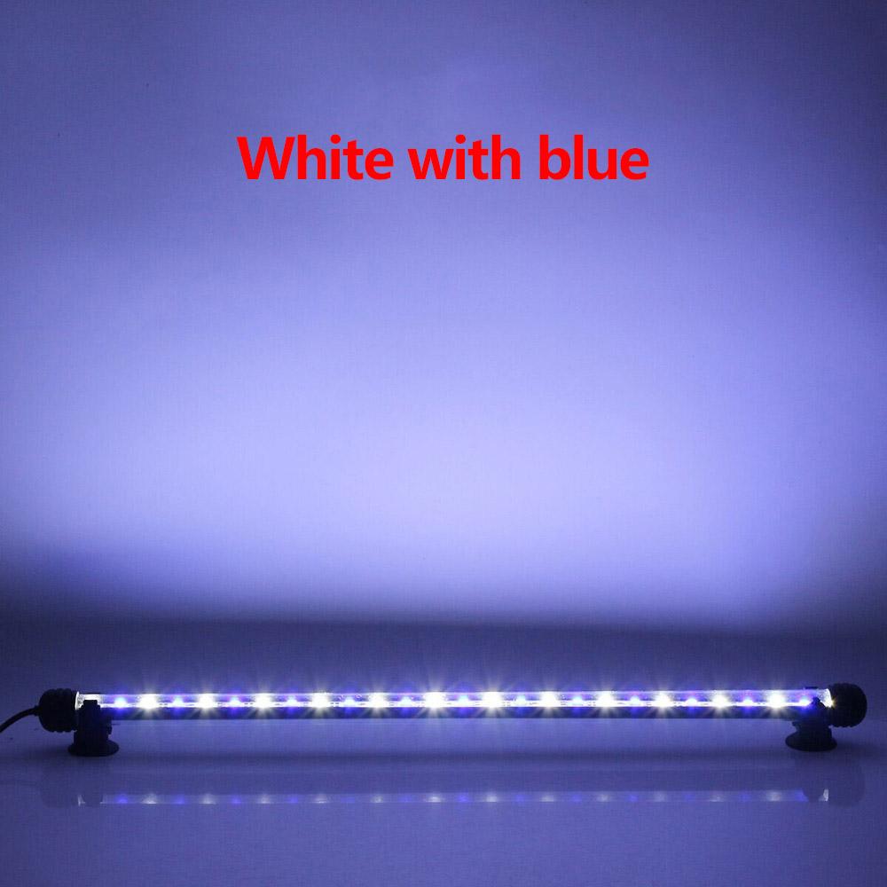 LED0224BLW (2)
