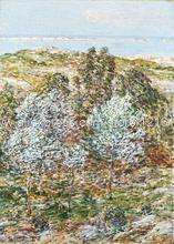 Frederick Childe Hassam Springtime Vision New Hand Painted Canvas Artwork Pictures For The Wall Office Backgro(China (Mainland))