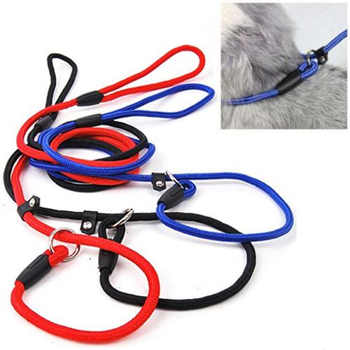 slip lead leash