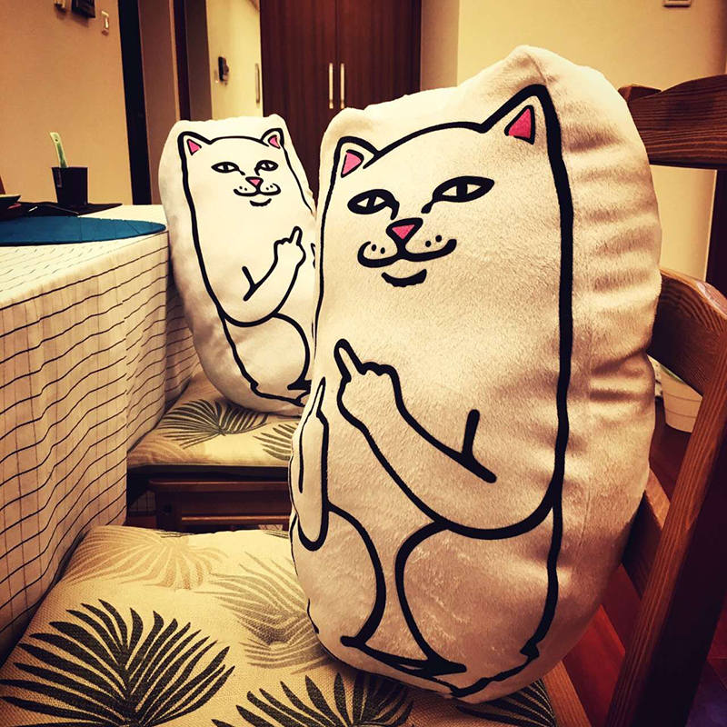 Pillow White Middle Finger Cat Funny Cushion for Sofa Bed Home Decoration Creative Gift Smile Cat Pillow 43x33x16cm(China (Mainland))