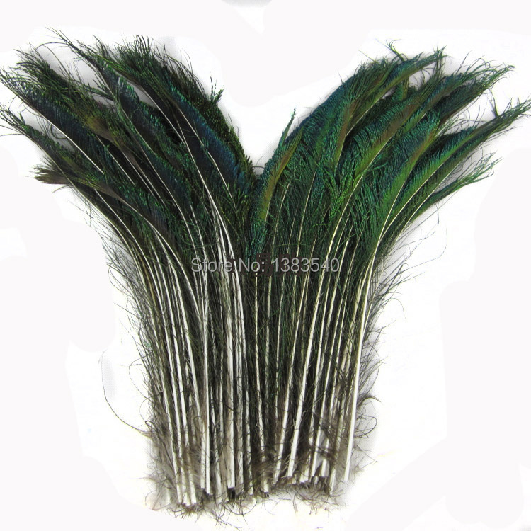 Wholesale 10 PCS beautiful 30-35 cm / 12 to 14 inches of peacock sword peacock feathers(China (Mainland))