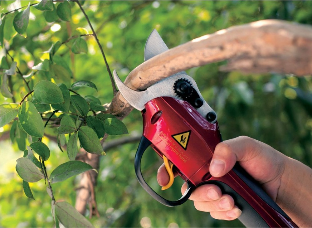Lithium battery electric pruner orchard pruning shear best for Electric garden scissors