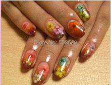 1Box Colorful Kawaii Mixed Plant Dried Flowers Decals Stickers Nails Art Fingernails Decoration