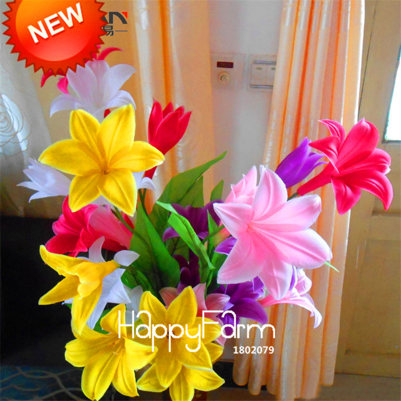 Big Sale!Color lily seeds cheap perfume lily seeds, mixing different varieties - 100 pcs,#VGG0R5(China (Mainland))