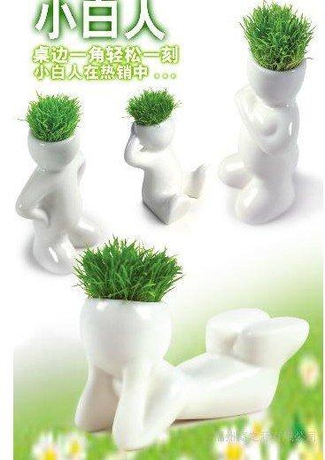 Creative Gift Plant Hair man Plant Bonsai Grass Doll Office Mini Plant Fantastic Home Decor pot+seeds wholesale retail(China (Mainland))