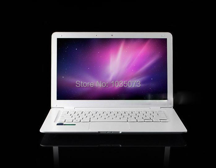 13.3 Inch Cheap Laptop With Free shipping Netbook with Intel D2500 WIN7 1GB DDR3 RAM 160GB 1.3M Webcam Russian keyboard option(China (Mainland))