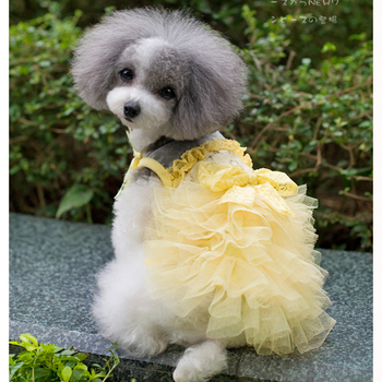 Free Shipping Summer abby princess lace puff skirt teddy vip pet clothes dog clothes dog skirt