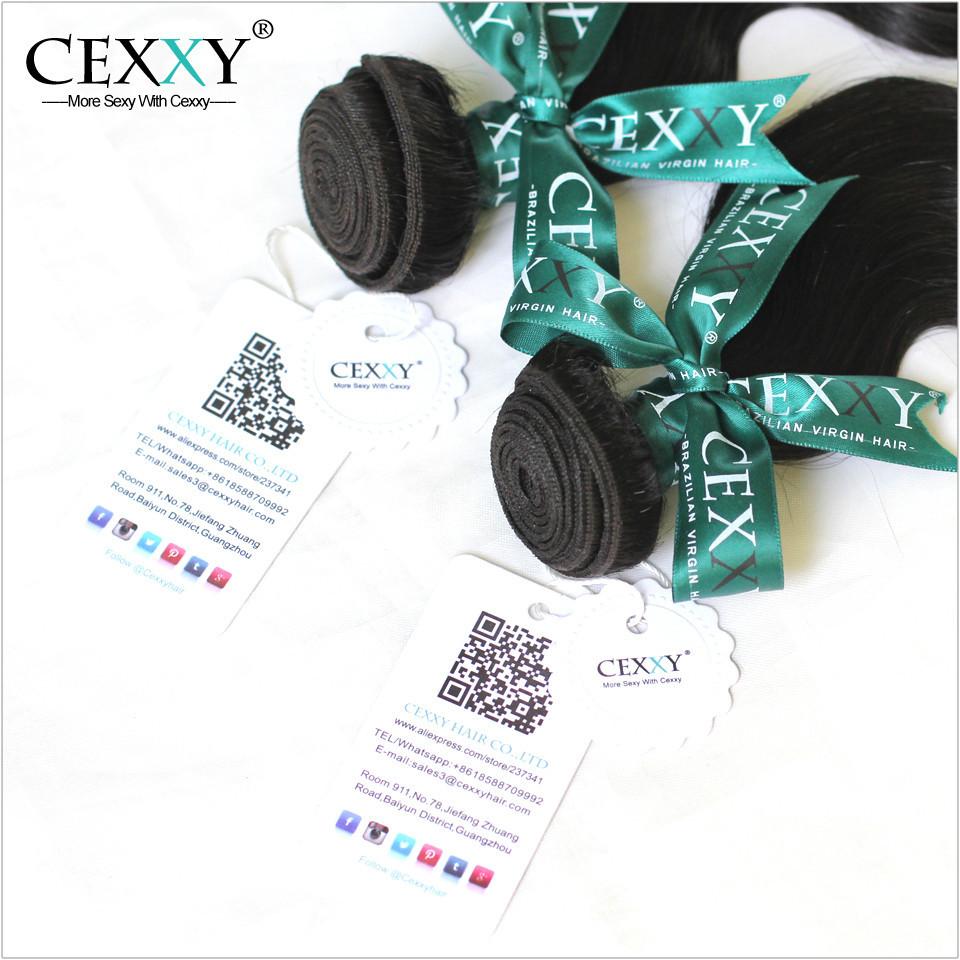 Cexxy Remy