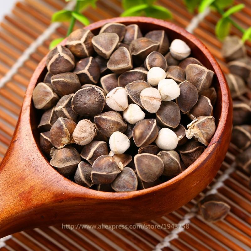 10pcs-Chinese-Moringa-seeds-Edible-seeds-Home-Garden-Plant-outdoor-garden-food-tree-Seeds-free-shipping