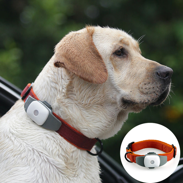 Waterproof GPS Tracker For Dog Pet Collar